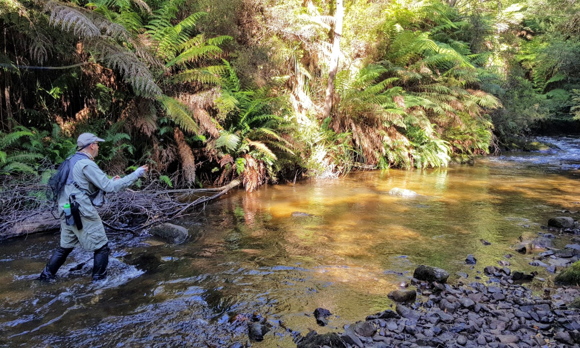Southern Fly Fishers Australia Inc.